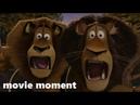 Мадагаскар 2 (2008) - Снос плотины (11/11) | movie moment