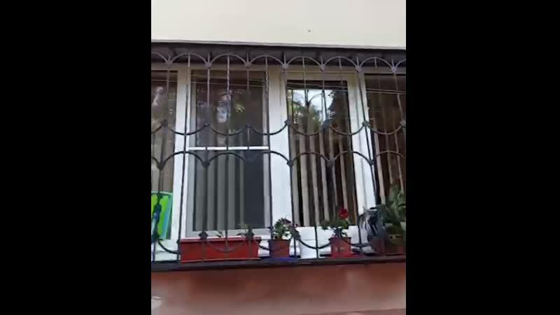 Моем окна универсальной шваброй