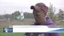 Новости Псков 20.09.2018 Путешественники вокруг света на бамбуковых велосипедах посетили Псков