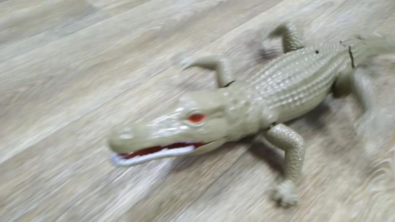 Крокодил на радиоуправлении, 1600 руб.