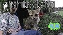 VLOG: В путь! 9 - Прогулка с котом / МЕЛКИЙ