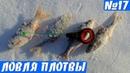 Ловля плотвы Зимой на тесто и мотыля