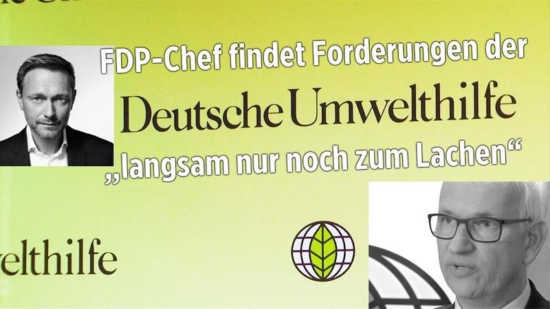 Feuerwerk-Verbote: FDP-Chef findet Forderungen der Deutschen Umwelthilfe langsam nur noch zum Lachen