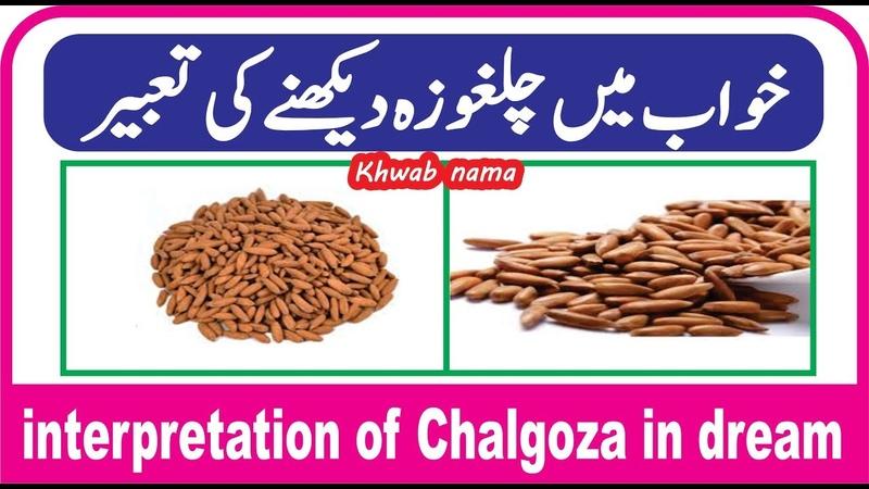 Khwab mein Chalghoza dekhne ki tabeer || خواب میں چلغوزہ دیکھنے کی تعبیر