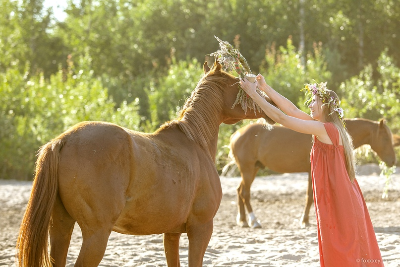 Картинки по запросу велесо конный театр фото