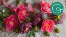 How to Make a Peony Flower Out of Crepe Paper