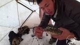 Рыбалка и обзор подводной камеры Calypso в Якутии! Yakutia