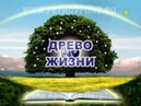 Регенерация зубов 2006г Аркадий Петров