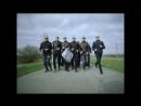 ГРИБЫ - ТАЕТ ЛЁД (ПОСЛЕДНЯЯ ПАРОДИЯ).mp4