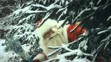 Дед Мороз - Главный Волшебник! Новый год, Россия