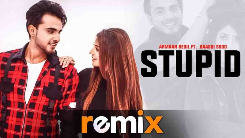 Stupid (Remix) | Armaan Bedil Ft Raashi Sood | Tru Makers | Latest Remix Songs 2019 | Speed Records