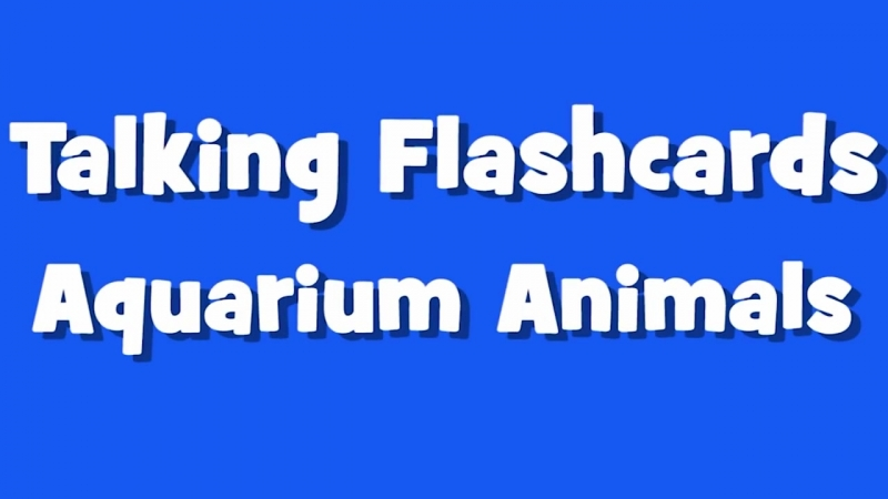 Learn Aquarium Animals - What Is It Game for Kids - Maple Leaf Learning