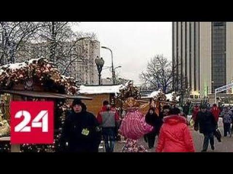 Выходные в Москве: Город зимы, селедка под шубой и дикие кошки среди цветов - Россия 24