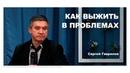 Наши лучшие друзья это проблемы Сергей Гаврилов