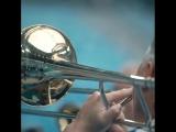 Песня Сергея Шнурова в исполнении болельщиков «Зенита»