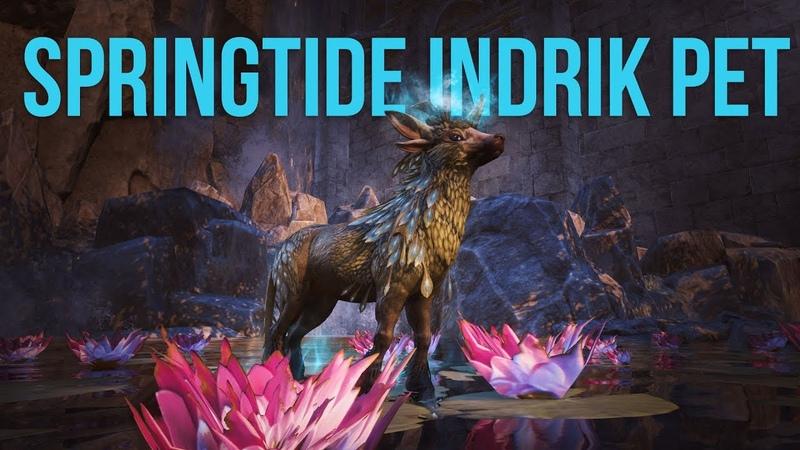 ESO Springtide Indrik Pet - Indrik Pet Showcase
