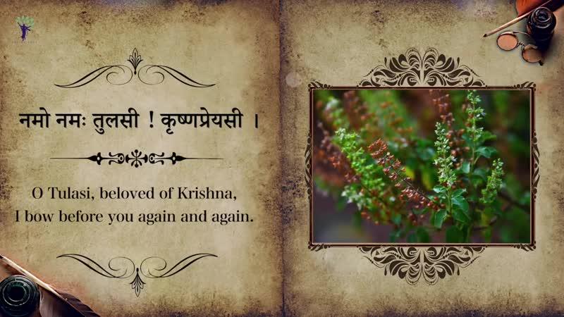 Tulsi Krishna Preyasi Namo Namaha _ ISKCON Temple Songs