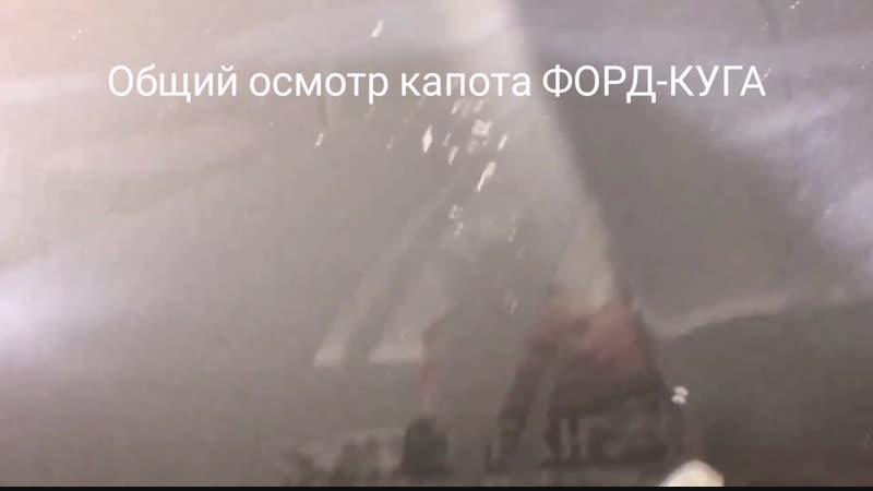 Форд-Куга (капот)