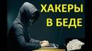 Хакеры стали беднее. Малый бизнес под угрозой.