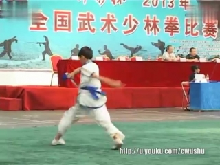 全国武术少林拳比赛 男子少林达摩剑 马富坤