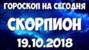 СКОРПИОН гороскоп на 19 октября 2018 года