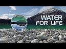 Интернет-компания IMAGINE PEOPLE - знакомство с продуктом Water for life живая вода