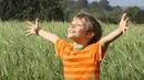 Илья Малов - Божья коровка (христианская песня для детей)
