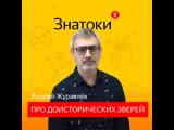 «Знатоки»: биолог Андрей Журавлёв — о гигантских насекомых и происхождении болезней