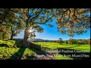 Emotional Positive Cinematic Royalty Free Music musiclicensing
