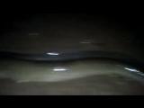 catch_biggest_eel_Kerala_river.mp4