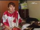 Собаку-поводыря жестоко избили и выбросили на помойку