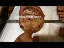 Ультразвуковой портативный нож для резки хлеба cheersonic