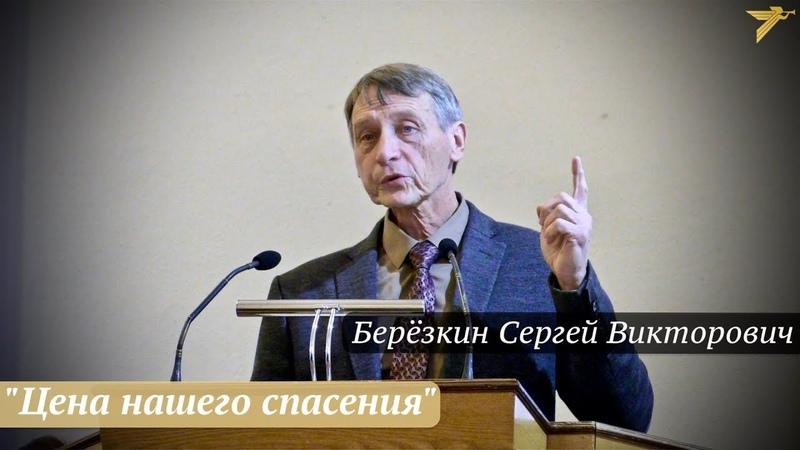 Берёзкин Сергей Викторович - Цена нашего спасения