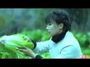 Village chinese food ranger