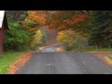 Дорога в осень... Раймонд Паулс. (Музыка из к-ф Двойной капкан)
