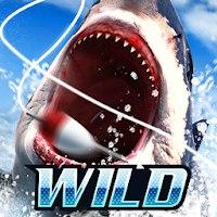 Install  Wild Fishing Simulator [MOD]