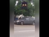 В Красноярске домашний козёл забрался на припаркованную иномарку