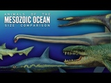 Marine Reptiles and other creatures that lived along dinosaurs. size comparison