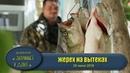 Жерех на каждом заборсе Крези рыбалка Волга Астрахань