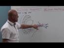 011 Trigeminal Neuralgia Part 4 Surgical Management