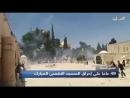 Aujourd'hui est le 49e anniversaire de l'incendie criminel de la sainte mosquée d'Al-Aqsa à Jérusalem occupée où tout le conten