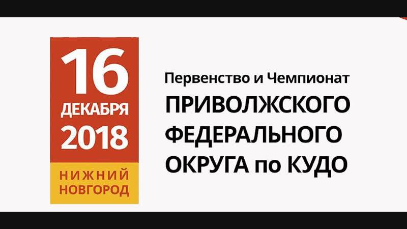 Первенство и Чемпионат ПФО по КУДО 16/12/2018 г. Нижний Новгород
