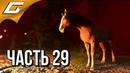KINGDOM COME Deliverance ➤ Прохождение 29 ➤ ОХОТНИКИ ЗА ПРИВИДЕНИЯМИ!