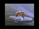 Мультфилмы (Подарок для самого слабого.  Мама для мамонтёнка (1981). Волк и теленок)