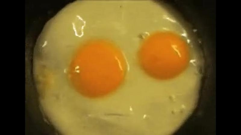 Даже мой завтрак в шоке от того на сколько рано я просыпаюсь...