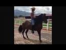 лошадь Колумбийский шаг (CHICA MONTANDO CABALLO PASO FINO)