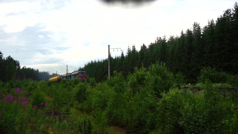 2М62-0833 перегон Песь - Хвойная 14/07/2018