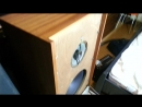 Tesla studio monitor