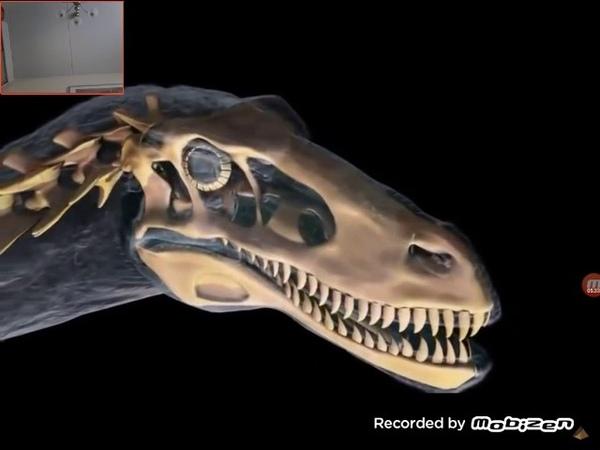 Мир динозавров дейноних