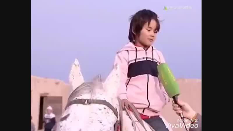 Жокеи Қыз !